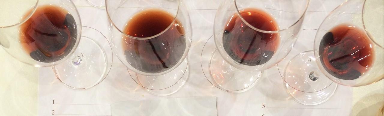 Vio Vino Wein (3)